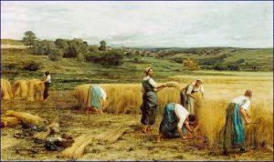 lhermitte-de-oogst